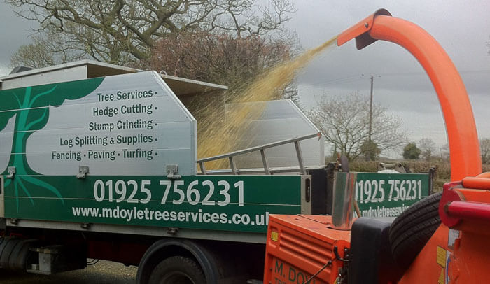 About M Doyle Tree Services