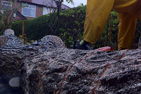 Stump Removal Cheshire